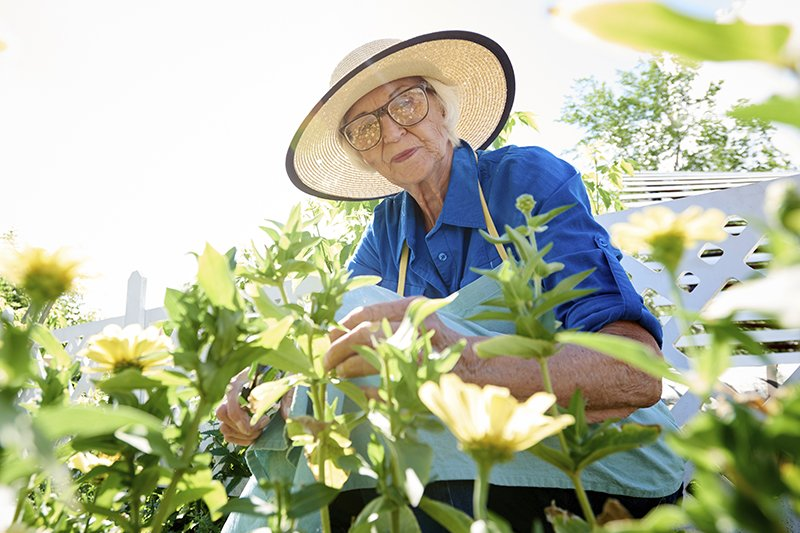 Seniors and gardening: discover the incredible benefits of this perfect pairing.