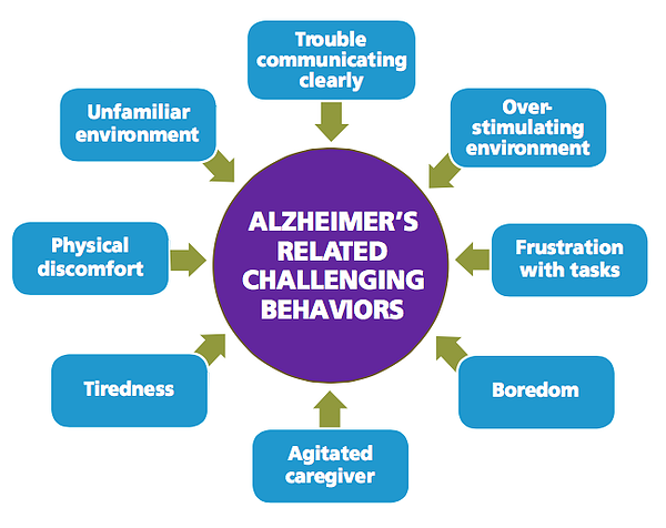 characteristics and causes of challenging behavior Unit 27: challenging behaviour lesson 8 the children act discuss possible characteristics and possible causes of this behaviour think of at least 4.