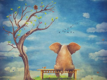 Sad elephant sitting on a bench on the glade